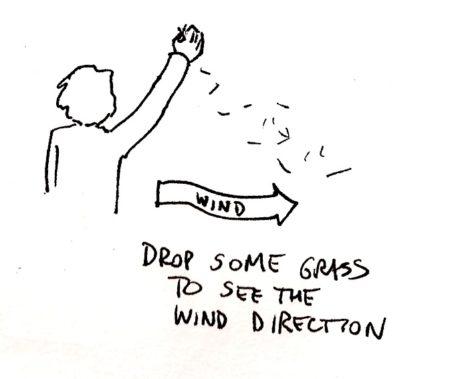 Lanza al aire algo de hierba para comprobar la dirección del viento